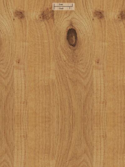 Шпон Knotty Oak